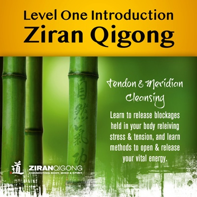 Ziran Qigong Level One Foundation Course